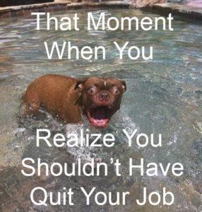 dont quit your day job meme